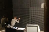 Акустическая коррекция комнаты офиса акустическим поролоном Пирамида
