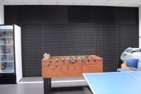 Акустическая коррекция офисных помещений акустическим поролоном Пирамида